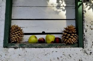 An Autumn Day in Oak Glen (22)
