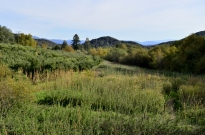 An Autumn Day in Oak Glen (7)