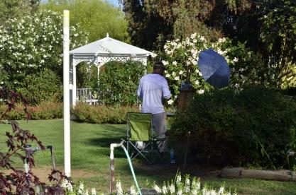 Brief Visit to the Garden (1)