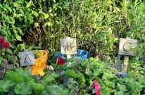 Brief Visit to the Garden (5)