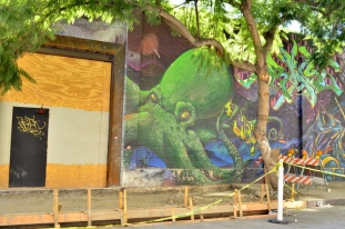 Street Art in L.A (16)