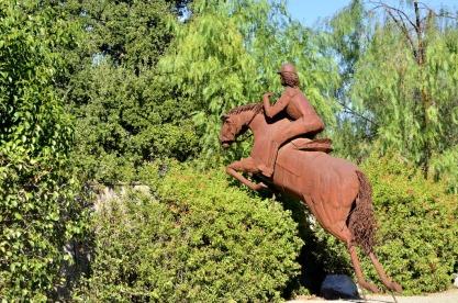 Temecula's Horses (1)