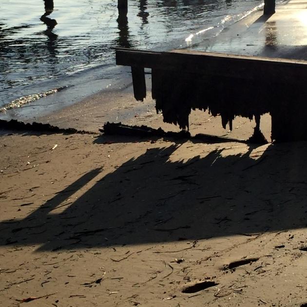 Seaside Remnant