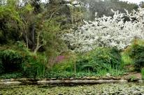 Descanso Gardens in March, part 1 (2)