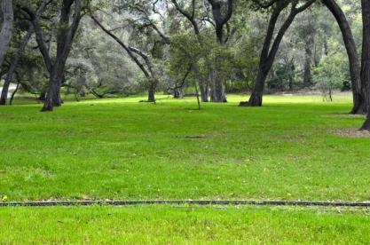 Descanso Gardens in March, part 1 (7)