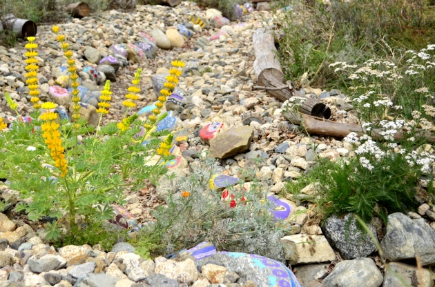 Painted Streambed