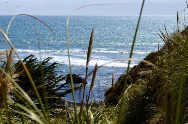 Seaside Near Santa Cruz