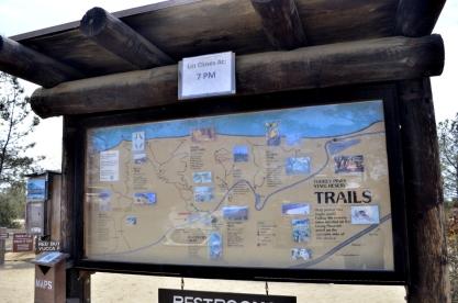 exploring-torrey-pines-state-park-1
