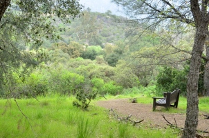 nice-bench-for-pondering