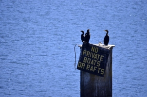 no-private-boats-or-rafts