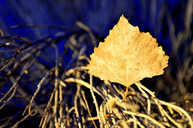 golden-leaf