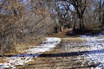 oak-glen-with-snow-part-2-4