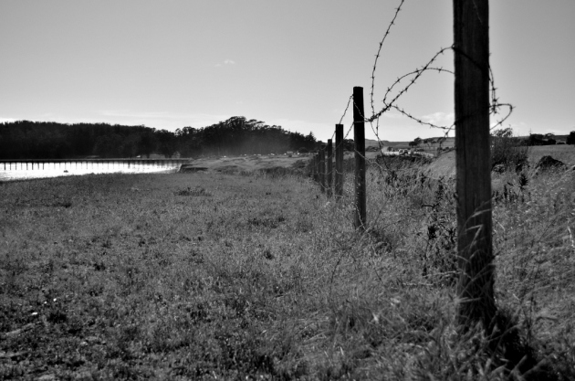 fence-line