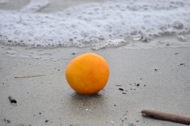 orange-on-the-sand