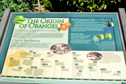 Origin of Oranges (1)