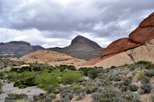 Spectacular Red Rock Canyon (10)