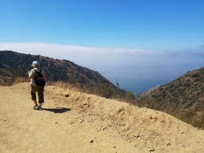 SueBee walking the ridge