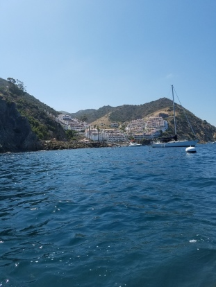 Kayaking at Catalina Island (13)