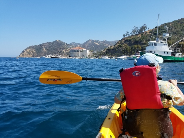 Kayaking at Catalina Island (14)