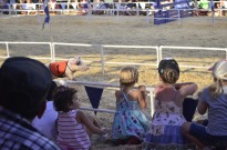 Racing Pigs at the Fair (13)
