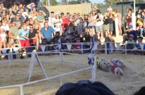 Racing Pigs at the Fair (18)