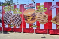 Fair Food (5)