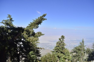 Tram to Mount San Jacinto, 3 (10)
