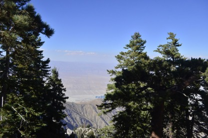 Tram to Mount San Jacinto, 3 (9)