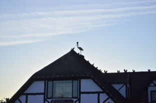 A Visit to Solvang, resized (11)