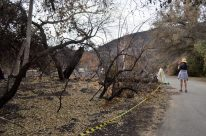 Scorched Earth, After the OC Fire (5)