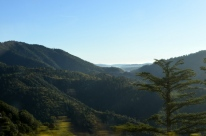 View on the drive to Big Bear