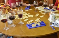 Wine tasting and games