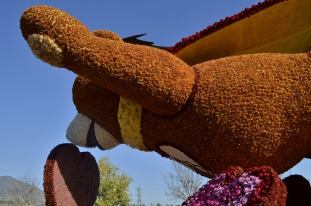 Closeups of Rose Parade Floats (11)
