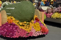Closeups of Rose Parade Floats (7)