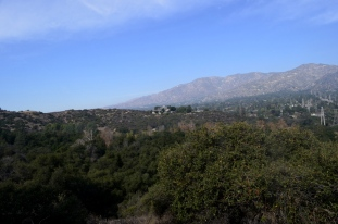 View from the fence line towards La Crescenta