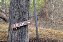 Halfway along the trail
