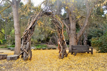 Descanso Gardens in Early January, part 2 (6)