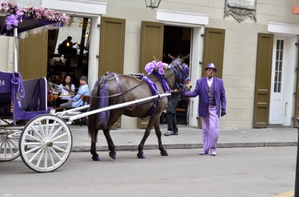 Leading his horse and buggy, French Quarter