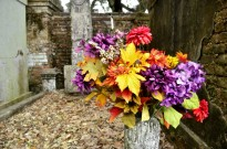 Taste of New Orleans, part 4, La Fayette Cemetery No. 1 (17)