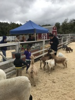 Rainy Day at Cal Poly's Taste of the Farm Store (18)