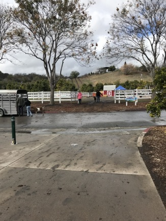 Rainy Day at Cal Poly's Taste of the Farm Store (6)