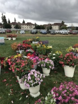 Rainy Day at Cal Poly's Taste of the Farm Store (9)