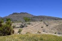 Ash Meadows (7)