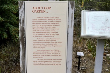 Rancho Santa Ana Botanic Gardens (1)