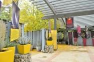 Rancho Santa Ana Botanic Gardens (7)