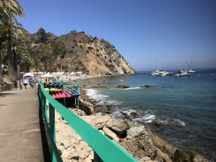 5th Annual Visit to Catalina Island (1)