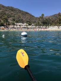 Kayaking off Catalina Island (1)