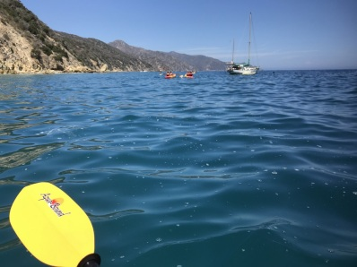 Kayaking off Catalina Island (4)