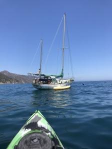 Kayaking off Catalina Island (5)
