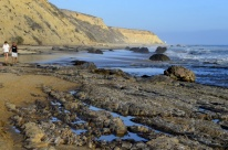 Sights from Crystal Cove, part 2 (5)